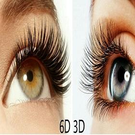 3D/6D Individual eye Lash High Street Kensington