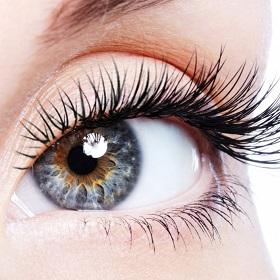 Top LVL Eyelashes Perming in high street kensington
